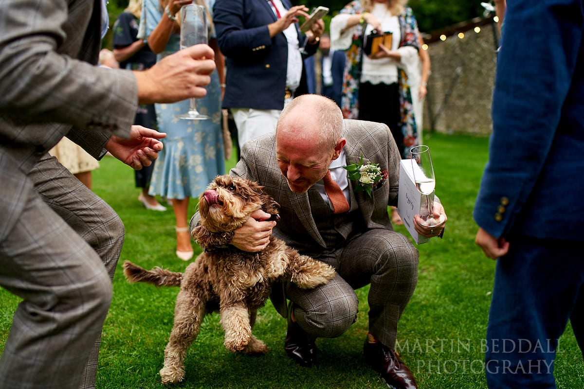 Grooms' dog visits the wedding reception